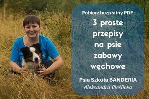 3 proste przepisy na psie zabawy węchowe
